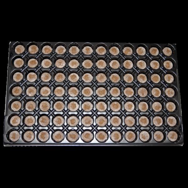 Bandeja Jiffy 7 - 41mm - 84 Alveolos